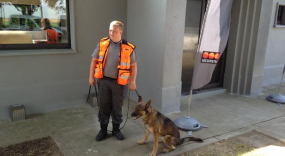 garde et son chien