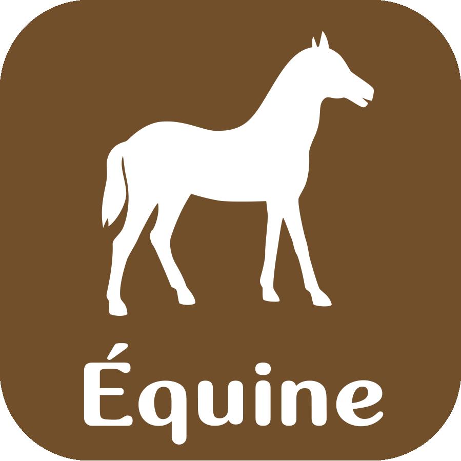 logo equine